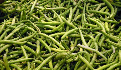 Vihreät pavut